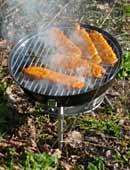 Welche Grilltechnik für den Garten: Holzkohle oder Gas?