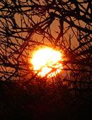 Solarenergie und Solarstrom für den Gartengebrauch nutzen